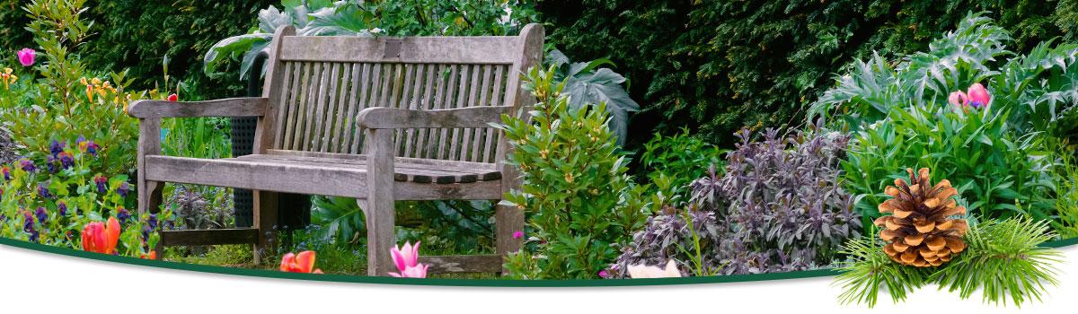 The Evergreen Pointe Therapy Garden